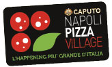 napoli-pizza-village-logo.jpg